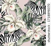 tropical zebra  orchid flowers  ... | Shutterstock .eps vector #1718898370