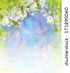 Stock photo cherry blossoms over blurred nature background spring flowers spring background with bokeh 171890060