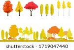 Autumnal Trees  Yellow Leaf An...
