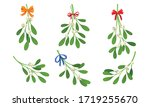 Mistletoe or Viscum Branches with Oblong Leaves and Berries Tied in Ribbons Vector Set