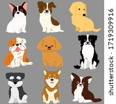 set of cute dogs sitting in... | Shutterstock .eps vector #1719309916