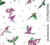 Set Of Colored Parrots....