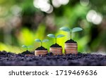 Small photo of Coins and plants are grown on a pile of coins for finance and banking. The idea of saving money and increasing finances.