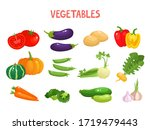 bright vector illustration of... | Shutterstock .eps vector #1719479443