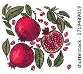 ripe  juicy fruits of sweet...   Shutterstock .eps vector #1719489019