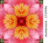 Kaleidoscope Pattern Of A...