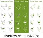 organic chicken meat parts...   Shutterstock .eps vector #171968270
