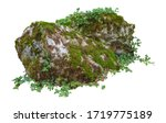 Cut Out Mossy Rocks. Ancient...