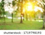 Blur Nature Bokeh Green Park By ...