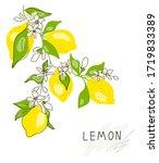 lemon tree branch with yellow... | Shutterstock .eps vector #1719833389