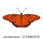 Butterfly Agraulis Vanillae....