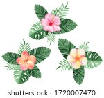 watercolor tropical leaves and... | Shutterstock . vector #1720007470