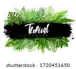 tropical leaves horizontal... | Shutterstock .eps vector #1720451650