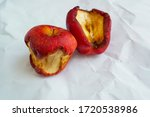 The Two Old Red Withered Apple...