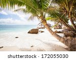 tropical beach with exotic... | Shutterstock . vector #172055030