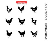hen icon or logo isolated sign... | Shutterstock .eps vector #1720574479