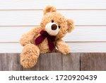 One Brown Cute Teddy Bear...