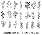 collection forest fern... | Shutterstock .eps vector #1721076940