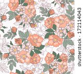 retro background with flowers... | Shutterstock .eps vector #172114043