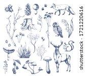 Nature Hand Drawn Vector Sketc...