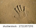 Man S Handprint On Wet Sand