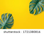 green monstera leaf on isolated ... | Shutterstock . vector #1721380816