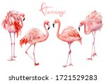 Set Of Pink Flamingo On An...