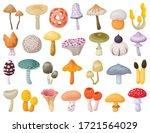 Mushroom Toadstool Isolated...
