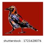 Portrait Of A Common Raven  ...