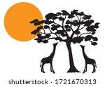 Giraffes Silhouette On Sunset ...