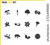 nature icons set with soy bean  ...