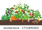 garden with vegetable plants... | Shutterstock .eps vector #1721890303