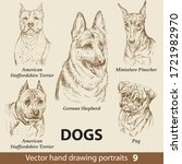 Hand Drawing Set Of A Cute Dog...
