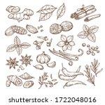vector sketch illustration of... | Shutterstock .eps vector #1722048016