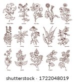 sketch illustration of...   Shutterstock .eps vector #1722048019