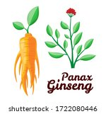 root and leaves panax ginseng....   Shutterstock .eps vector #1722080446