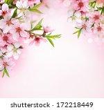 Peach Flower Blossom Pink Background - Fine Art prints