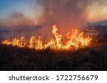 Burns Dry Grass  In The Sky ...