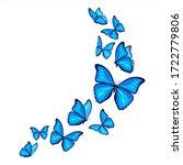 blue morpho butterflies fly on... | Shutterstock .eps vector #1722779806