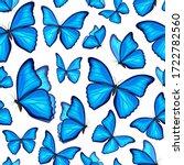 Blue Morpho Butterflies Fly....