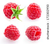 raspberry. fruit isolated on
