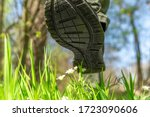 Small photo of men's shoe tramples flowers on a green meadow, people destroy nature