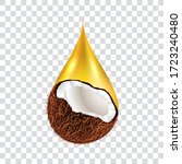 coconut oil drop  isolated ... | Shutterstock .eps vector #1723240480