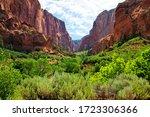 Zion National Park  View...