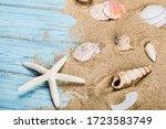 Sea Shells And Starfish On The...