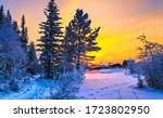 Sunset winter snow nature scene....