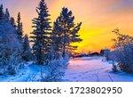 Beautiful Winter Snow Nature...