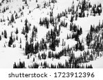 high contrast black and white... | Shutterstock . vector #1723912396