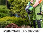 Caucasian Male Gardener Holding Gasoline Cordless Hedge Trimmer Getting Ready To Prune Bushes And Shrubs.  - stock photo