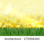 green grass background | Shutterstock . vector #172406264